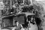 1961. Ženy a muži při žních v Sehradicích v roce 1961.