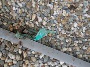 Neznámý vandal poškodil fasádu jednoho z domů v Otrokovicích tím, že na něj hodil sáček s exkrementy a barvou.