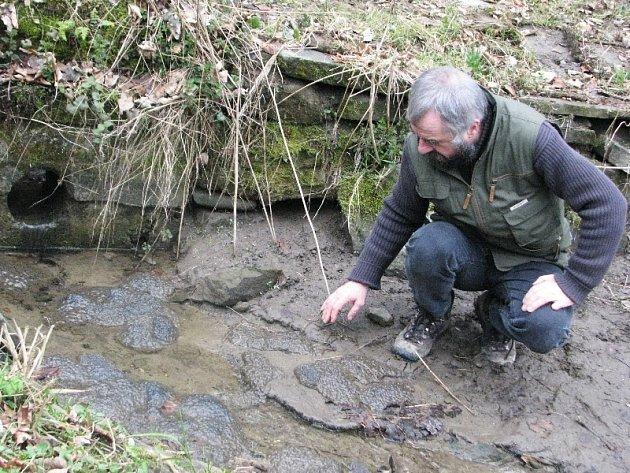 Z vypuštěných sádek u přehrady Bystřička unikly nakladené žabí snůšky, Bystřička přišla o žabí populaci