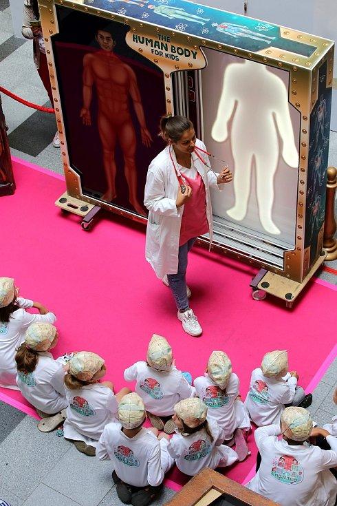 Výstava Objevte tajemství lidského těla v obchodním centru  Zlaté jablko ve Zlíně.