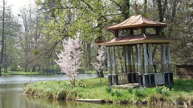 Divoký rybník.