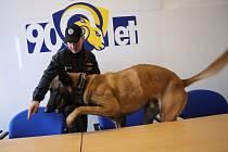 Cvičení policejních psů na zimním stadionu ve Zlíně. Ondřej Malý a pes Uro