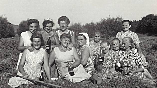 ČERVEN 1964. Družstevnice při sušení sena.