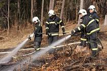 Požár v porostu mladého lesa u Jasenné na Zlínsku.