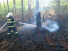 O prodlouženém víkendu vyjížděli hasiči nejméně k padesáti požárům v přírodě.