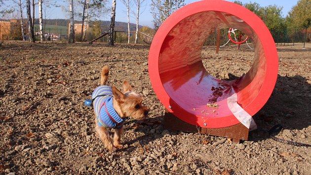 Zanedlouho otevřou na Jižních svazích ve Zlíně nové hřiště pro psy