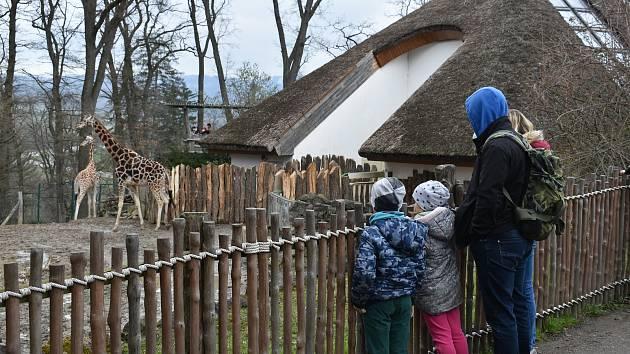 Zlínská zoologická zahrada, duben 2021.