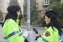 Pomněnky v uniformách hlídají, ale i pokutují