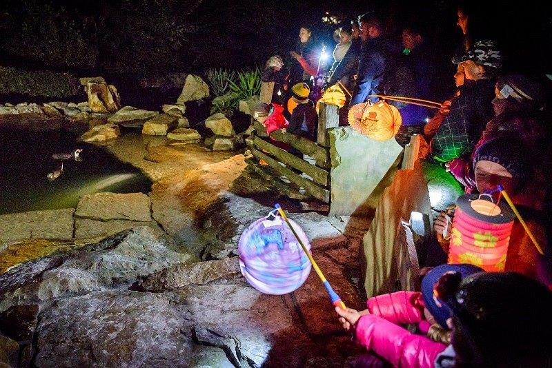 Večerní lampionová prohlídka v Zoo Zlín