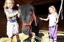 Prázdninový jezdecký tábor na ranči Všemina.