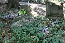 Pole číslo 32 - zde je dětský hřbitov