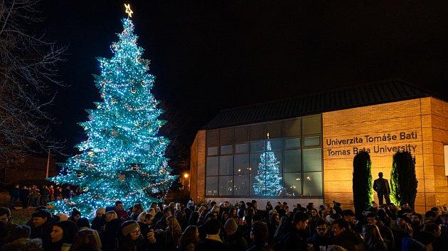 V Mostní ulici  ve Zlíně se rozzářil univerzitní vánoční stromeček
