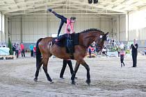 V sobotu 28. dubna 2018 se v Zemském hřebčinci v Tlumačově konaly voltižní závody koní.