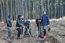 Hokejisté PSG Berani Zlín společně se zlínskými házenkářkami se zapojili do projektu Dne obnovy lesa a na Majáku vysázeli les.