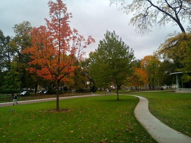 Park Komenského ve Zlíně je nejlepší! Zvítězil v soutěži Park desetiletí