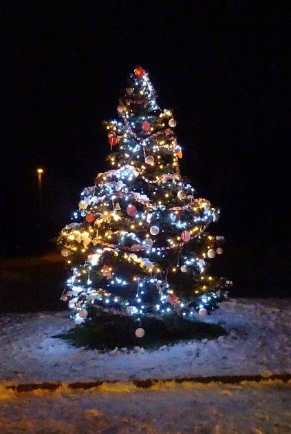 Vánoční strom Dobrkovice
