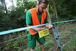 Elektrické ohradníky by měly zabránit migraci prasatům nakaženým africkým morem prasat. Ohradníky dnes začali pracovníci najaté firmy instalovat v úseku Zlín-Fryšák.