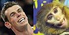 Gareth Bale vs. opička.