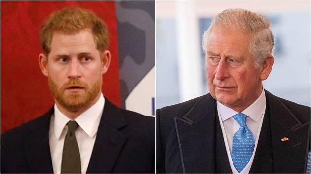Princ Harry a princ Charles