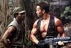 V Predátorovi poměřovali svaly s Arnoldem...