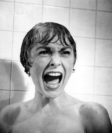 Za film Psycho byla Janet nominovaná na Oscara.