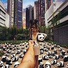 Výstava 1600 pand v Hong Kongu.