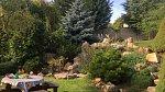 O rozsáhlou zahradu se převážně stará Míšina maminka.