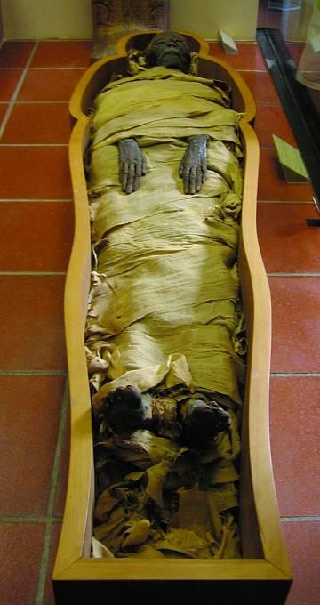 Mumií je spousta, ale žádná jako ta, kterou zkoumal Granville.
