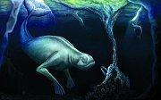 Ningen: Humanoid připomínající člověka a mořskou pannu