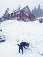 Sníh si užil i jejich pes Jonáš.