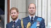 Princ William, princ Harry