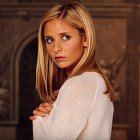 Buffy Summers je mladá studentka, která se dozvídá, že je přemožitelka upírů. Několikrát se chce svého daru zbavit, ale vždy pokračuje dál ve svém poslání chránit svět před upíry, démony a jinými monstry.