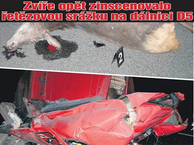 Viníkem nehody byl statný jelen (nahoře). Hasiči vystříhávali řidiče návěsu z plechové změti.