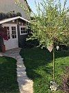 Na zahradě mají i domeček, kde zatím mají uskladněná kola a koloběžky.