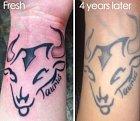 Tetování býka po čtyřech letech.
