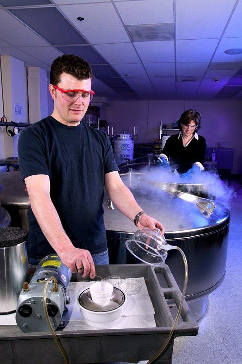 Současná věda umí zmrazit maximálně lidské spermie nebo vajíčka.