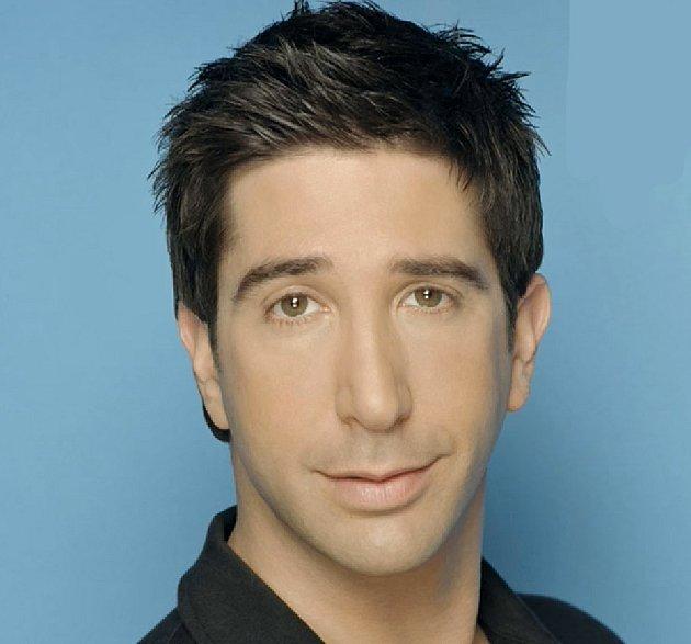 Ross rozváděč. Bratr Monicy, nejlepší kámoš Chandlera a nakonec životní láska Rachel. Má dvě děti a je třikrát rozvedený. Vcelém seriálu je něžně ukazován jeho židovský původ. Ross je velmi spořivý a rád využívá jakékoli benefity.
