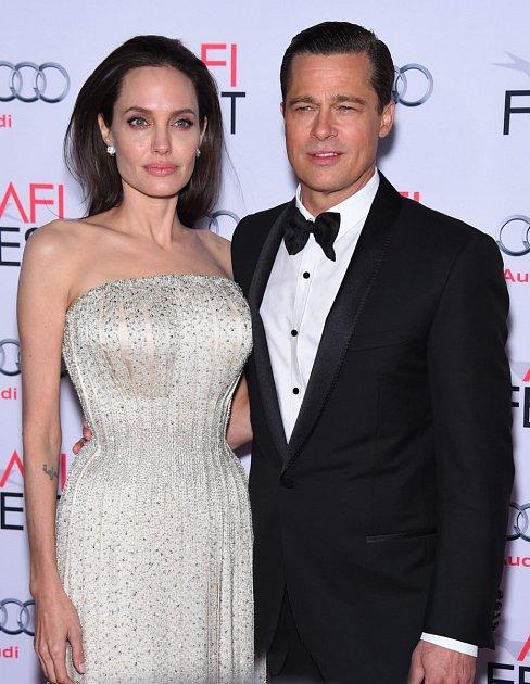 Válka Roseových dvacátého prvního století, tak by někdo mohl popsat vývoj vztahu dvou největších hollywoodských hvězd, Angeliny Jolie a Brada Pitta. Láska na první pohled se změnila na vražednou hru na kočku a myš.