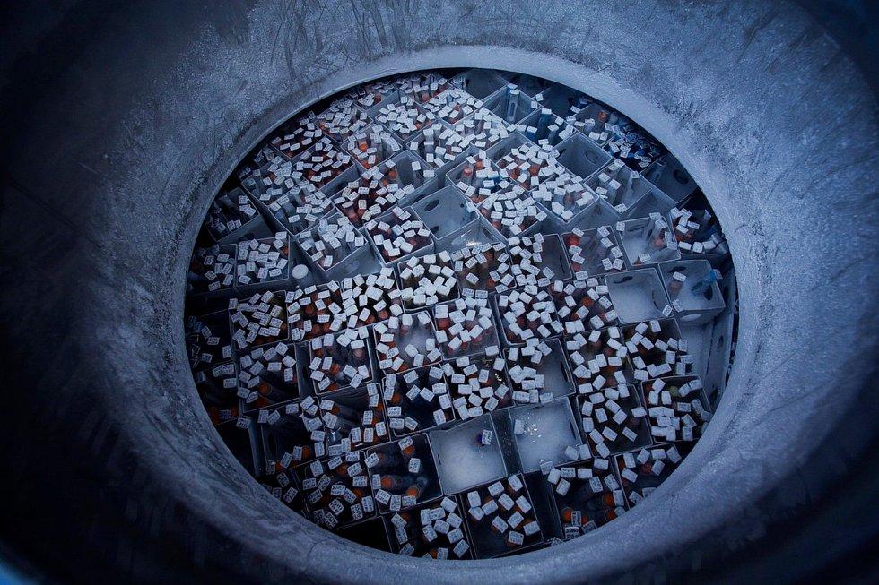 Obří komplexy, kde vládne trvalá zima, nejsou žádné sci-fi. Pohled doútrob kryobanky vLos Angeles, která je největší nasvětě. Člověk by se tu snadno ztratil.