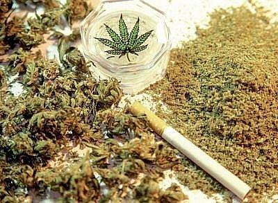 Marihuana: ilustační foto