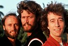 Kapela Bee Gees byla založena třemi bratry Gibbsovými. Nejstarším Barrym (uprostřed) a dvojčaty Robinem a Mauricem (vzadu). Bohužel Maurice v roce 2003 zemřel a bratři zůstali opuštění.