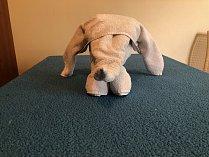 slon z ručníků