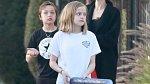 """,,Angelina Jolie souhlasila s rozumným řešením, které dává Bradovi Pittovi společnou fyzickou a právní péči o šest jejich krásných dětí,"""" tvrdí zdroj."""