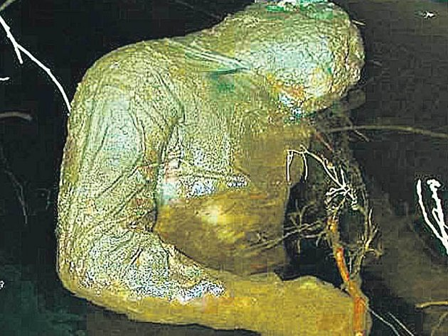 Torzo muže nalezené ve Vltavě na česlech u Dlouhého mostu.