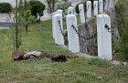 Voják odpočívající na trávě