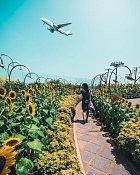 Letiště je plné zahrad, kterými se můžete během čekání procházet