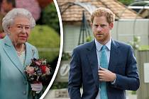 Harry má až na občasné konflikty s babičkou dobré vztahy.