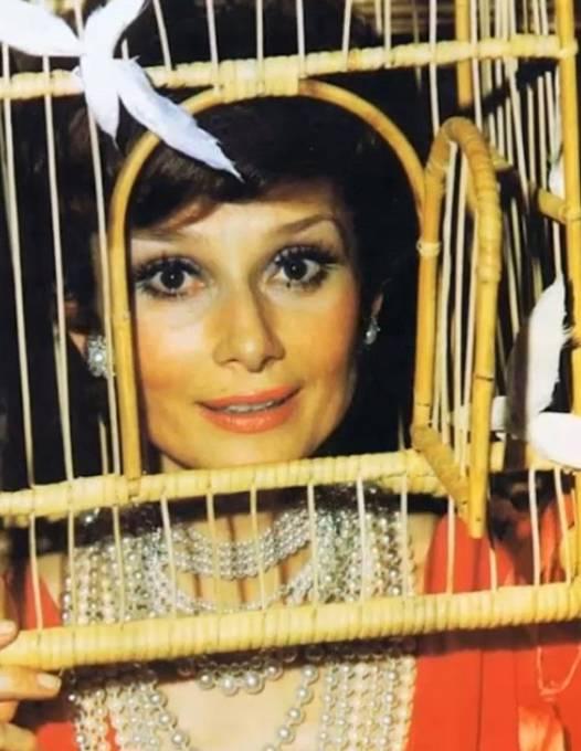 Audrey Hepburn na večírku