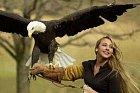 Krásně můžete vypadat i s masivním ptákem na ruce.