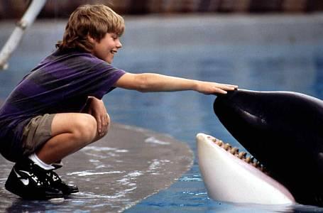 Zachraňte Willyho a dvanáctiletý Jason James Richter.